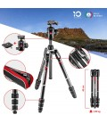 MANFROTTO TRIPODE BEFREE GT CARBONO REF. MKBFRTC4GT-BH