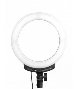 ANELLO NANLITE LED BICOLORE HALO 10B (NA122029) - ANELLO LUCE LED